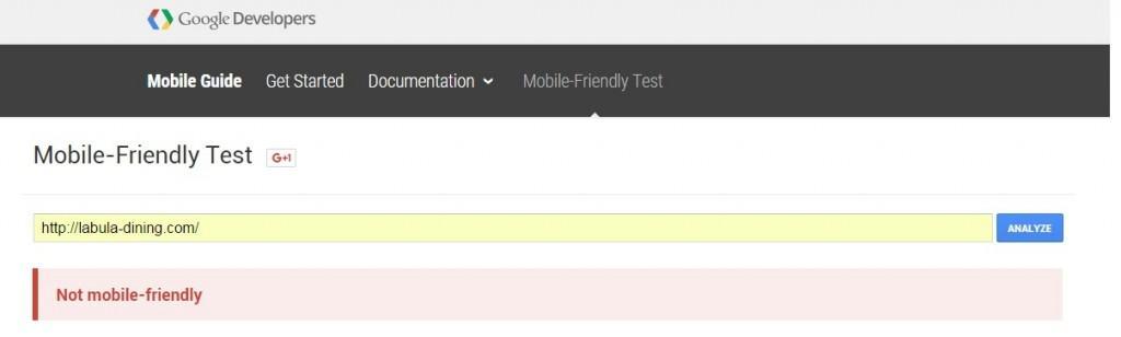 Google Test Fail